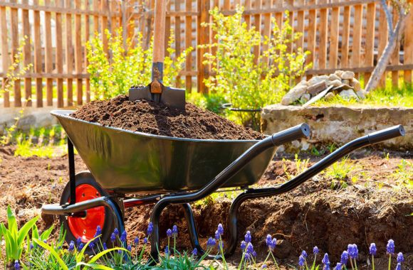 Who is responsible for the garden maintenance of a rented property? - Image of a garden