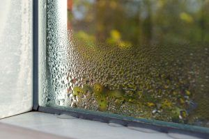 winter guide for landlords | window in home with condensation