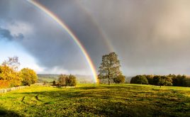 Hot and stormy weather warning…a perfect recipe for property claims | sunshine and dark clouds forming a rainbow over a field